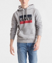 194910028 19491-0028 Graphic Po Hoodie Heather Grey